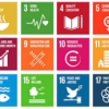 What has happened to the Sustainable Development Goals?