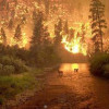 Climate change: verging on a slow-burning apocalypse?