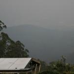 yarra valley under smoke cropped resized