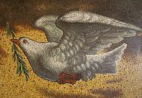 Peace dove_opt