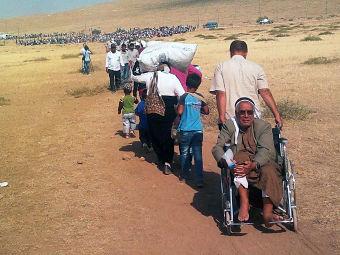 syrian trail